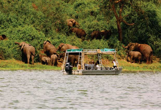 12 Days Best Uganda Wildlife Special