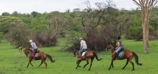 Activities in Lake Mburo National Park
