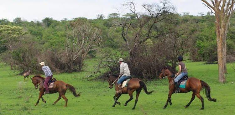Activities in Lake Mburo National Park
