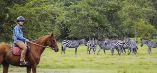 5 Days Lake Mburo & Queen Elizabeth Safari
