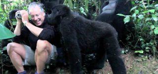 Bwindi Gorilla Habituation Experience