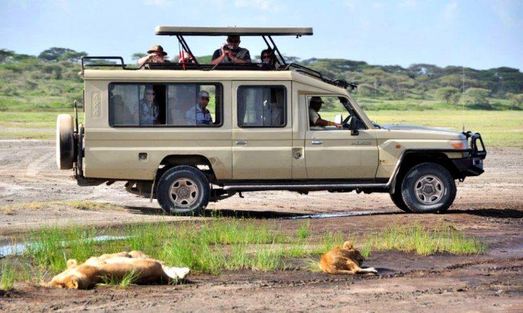 Is Uganda Safe for Safari 2020 -22