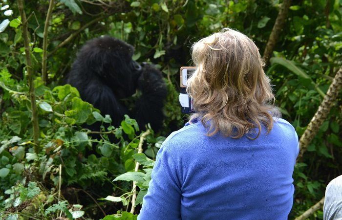 Rules and Regulations for Gorilla Trekking